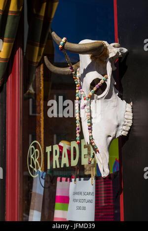 USA, Massachusetts, Newburyport, Middle Street, storefront with cow's head - Stock Photo
