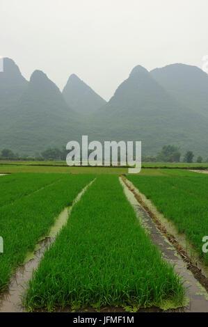 China, Guangxi Province, Guilin Region, Karst Mountain and rice field Landscape around Yangshuo - Stock Photo