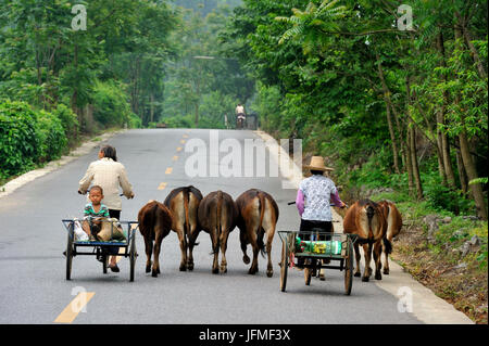 China, Guangxi Province, Guilin Region, around Yangshuo - Stock Photo