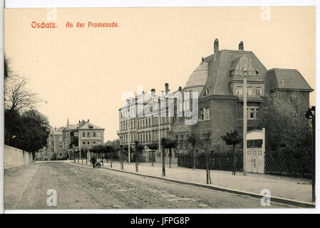 11943-Oschatz-1910-An der Promenade-Brück & Sohn Kunstverlag - Stock Photo