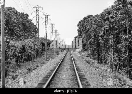 railroad tracks disappearing into the horizon in Amagansett, NY - Stock Photo