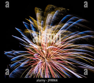 Firework in golden,pink and blue on black background in graphical color painting style - Stock Photo