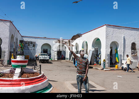 Eagle landing on hand of young man with built structure and semi-truck in background against clear sky - Stock Photo