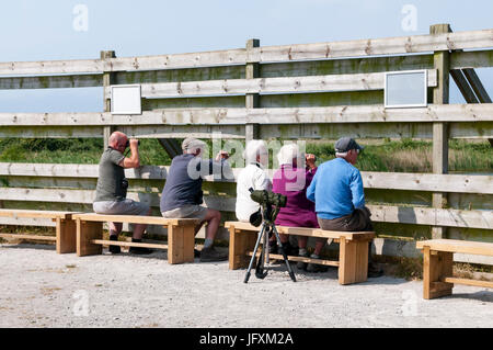 Bird watchers at the Fen Hide overlooking the Freshwater Marsh at RSPB Titchwell Marsh bird reserve on the North - Stock Photo
