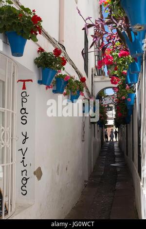 The Calleja de las Flores, Cordoba, Spain. - Stock Photo