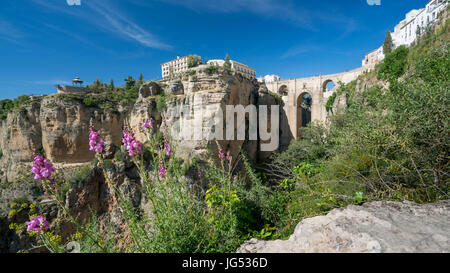 Ronda Panorama with floral countryside foreground showing the Parador,  Puente Nuevo and El Tajo Gorge against a - Stock Photo