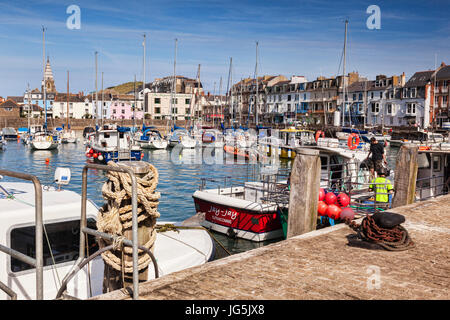 14 June 2017: Ilfracombe, Devon, England, UK - The busy harbour and quay on a warm summer day. - Stock Photo