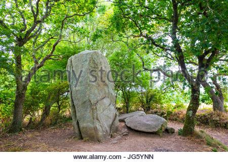 France, Brittany (Bretagne), Morbihan department, Erdeven. Neolithic menhir standing stone at Alignements de Kerzerho. - Stock Photo