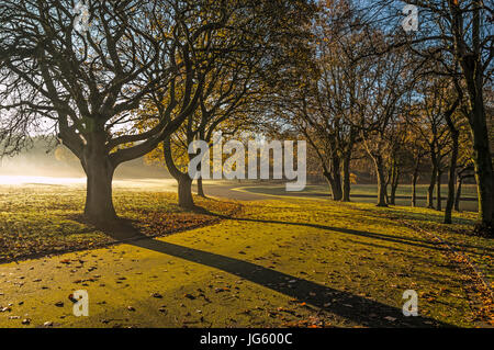 An early sunrise in autumn casting long shadows - Stock Photo