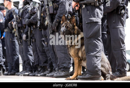 A police dog sits in between officers of the special unit 'BFE ' (Beweissicherungs- und Festnahmeeinheit) (lit. - Stock Photo