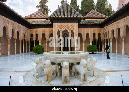 Patio de los Leones (Court of the Lions), Palacios Nazaríes, La Alhambra, Granada, Andalucia, Spain: the eponymous - Stock Photo