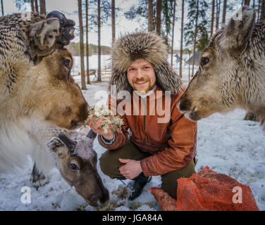 Man in a fur hat feeding reindeers, Lapland, Finland - Stock Photo