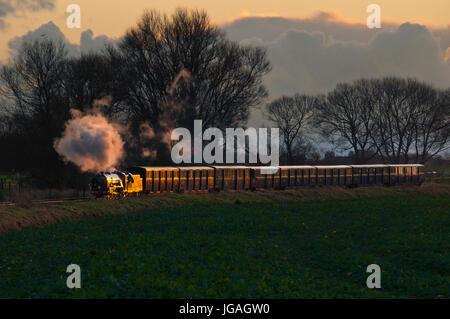 Romney Hythe and Dymchurch railway. A 15' gauge miniature railway in Kent UK. - Stock Photo
