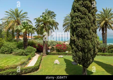Palm trees in the garden of Beatitudes church, overlooking the Sea of Galilee, Mount of Beatitudes, Kinnerot:Tiberias, - Stock Photo
