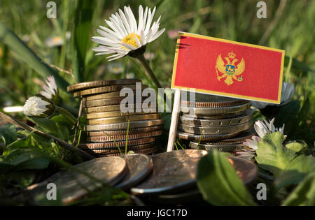 Montenegrin flag with stack of money coins with grass and flowers - Stock Photo