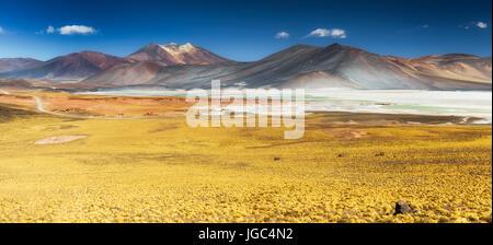 Salar de Aguas Calientes, Atacama, Chile - Stock Photo