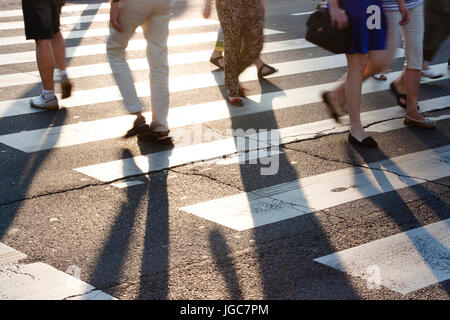 People crossing the street at zebra crossroad, legs with long shadows in sunset in summer - Stock Photo