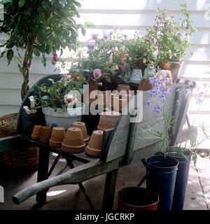 Flower pots on wooden cart - Stock Photo