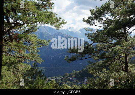 Mountain view background framed by green evergreen tree forest.  Mountains covered in tall trees and a cloudy sky. - Stock Photo