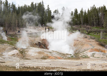 Black Growler Steam Vent at Porcelain Basin, Norrise Geyser Basin, Yellowstone National Park - Stock Photo
