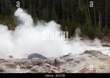 Close-up of Steamboat Geyser at Norris Geyser Basin in Yellowstone National Park - Stock Photo