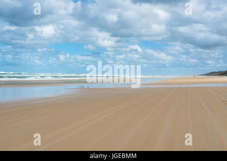 75 mile beach on Fraser Island, Queensland, Australia. - Stock Photo