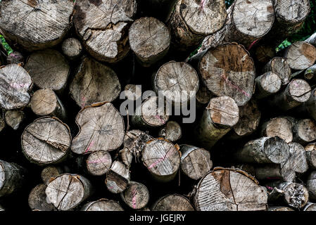 Abstract photo of a pile of natural wooden logs background dry chopped firewood logs ready for winter - Stock Photo