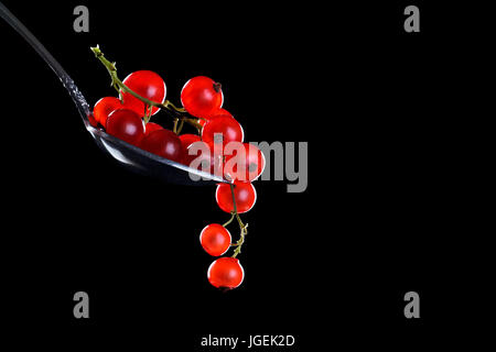 Ripe red currant berries on a black background. - Stock Photo
