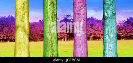 Colorfull Tree Trunks in the Park. Abstract Psychedelic Colors - Stock Photo