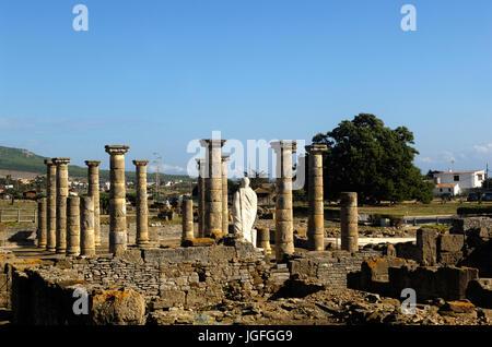 Roman ruins of Baleo Claudia in Bolonia, Cadiz province, Spain - Stock Photo