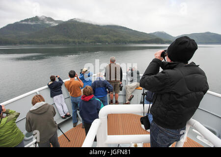 During an expedition on a cruise ship, passengers use binoculars to scan the landscape. - Stock Photo