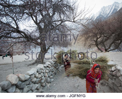 Women returning home after getting wood for cooking and heating and hay to feed their livestock, a two hour walk. - Stock Photo