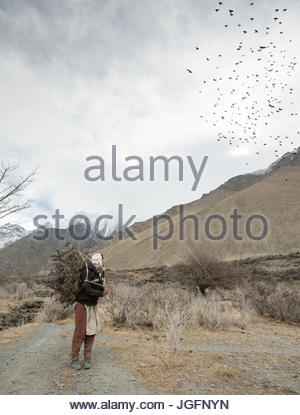 A woman returning home after getting wood for cooking and heating and hay to feed their livestock, a two hour walk. - Stock Photo