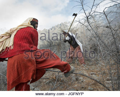 Women get wood for cooking and heating a two hour walk. - Stock Photo