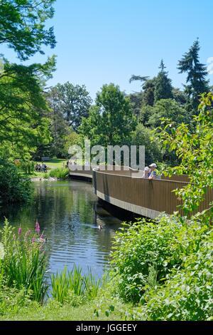 The Sackler bridge in Kew gardens Surrey UK - Stock Photo