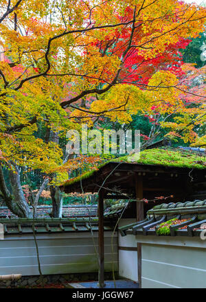 Colorful Autumn at Koto-in Temple in Kyoto, Japan - Stock Photo