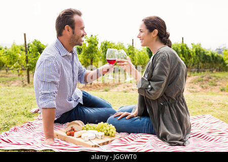 Smiling young couple toasting red wineglasses at lawn - Stock Photo
