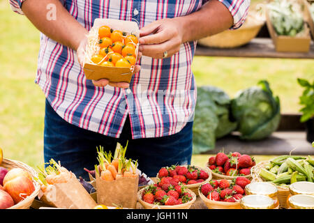 Midsection of man selling tomatoes while standing at farm - Stock Photo