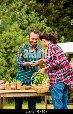 Young man selling organic vegetables to woman at farm - Stock Photo