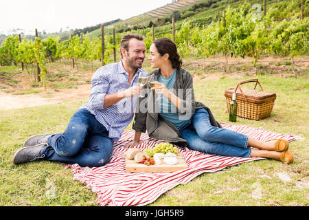 Full length of smiling young couple toasting wineglasses at vineyard - Stock Photo