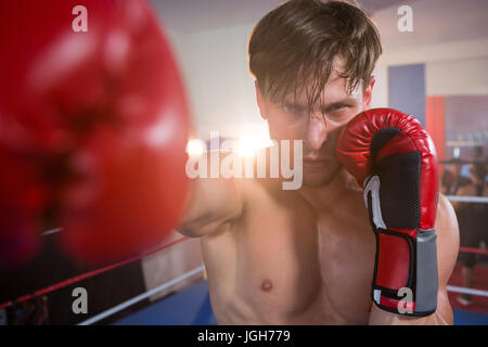 Portrait of young male boxer practicing in boxing ring at fitness studio - Stock Photo
