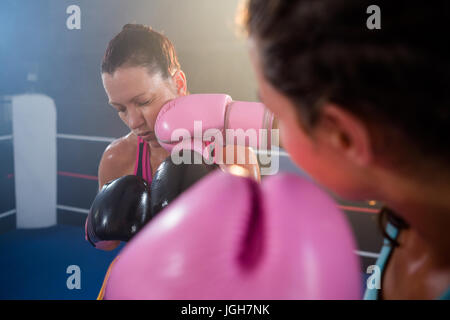 Close-up of female boxer punching athlete in boxing ring - Stock Photo