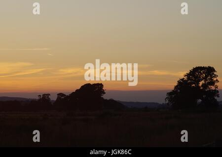 An Orange Sunset Silhouetting Trees on Farmland. Powderham Estate, Devon, UK. July, 2017. - Stock Photo