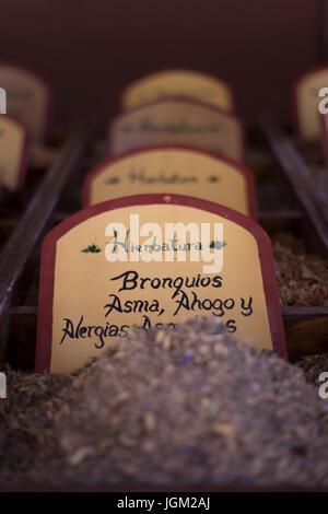Medicinal plants - Stock Photo