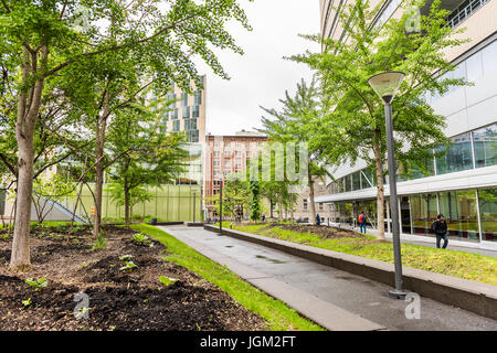 Montreal, Canada - May 26, 2017: UQAM Science School in University with glass modern buildings and park with students - Stock Photo