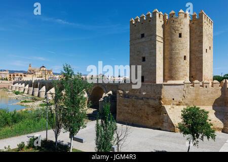 Cordoba, Cordoba Province, Andalusia, southern Spain.   Torre de Calahorra (right), Roman bridge and the mosque, - Stock Photo