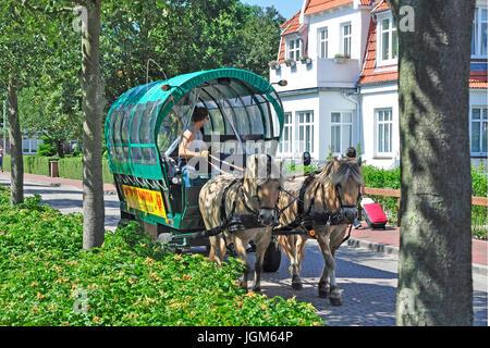 Europe, Germany, Lower Saxony, East Friesland, Friesland, scenery, blue sky, day, daylight, Outside, field recording, - Stock Photo
