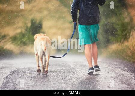 Young man running with his dog (labrador retriever) in heavy rain on the rural road. - Stock Photo