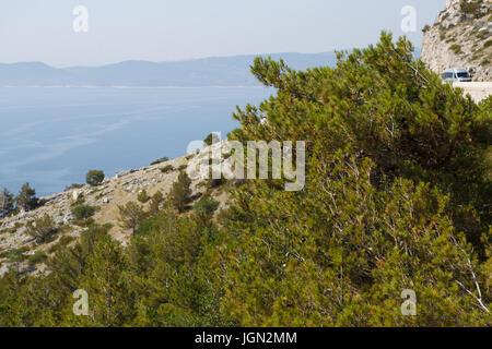 MAKARSKA,CROTIA - 16 JUNE,2017: Awesome Croatian Riviera resort view from top of mountain.Enjoy beautiful Adriatic seaside with crystal clear water.Bl