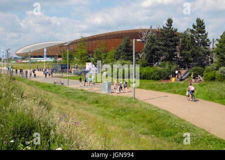 Wildflowers bloom in June near the the Queen Elizabeth Olympic Park Velodrome Stratford, Newham East London England - Stock Photo